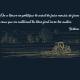 Voltaire (citation)