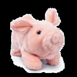 Cochon mecanique
