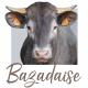 Mug Bazadaise