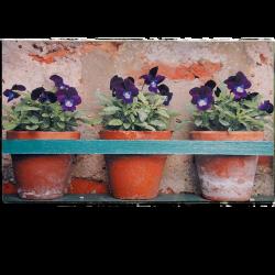 Paillasson pots de fleurs